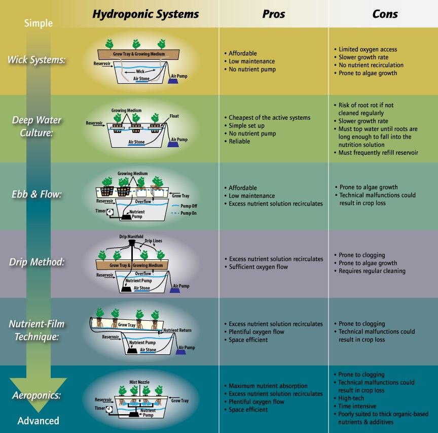 Sistem Hidroponik