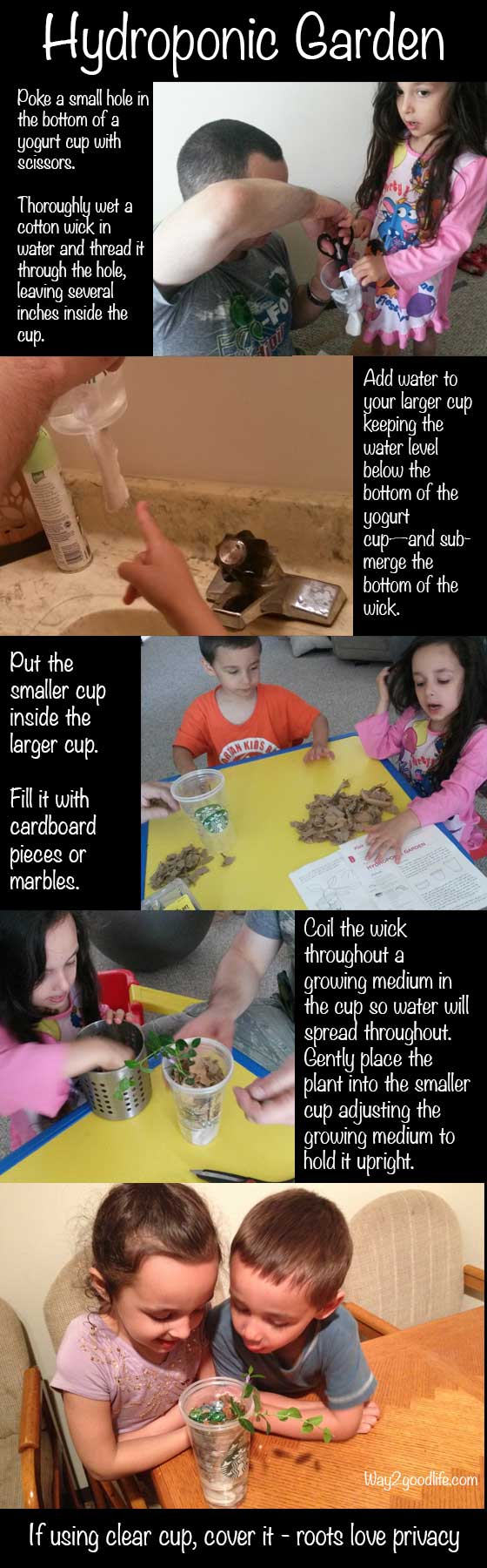 hydroponics-wick-system-children
