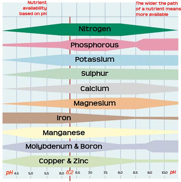 nutrient-solubility