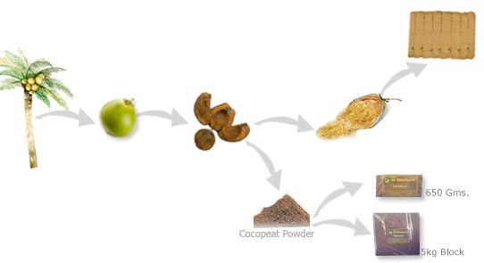 cocopeat-manufacturing-process